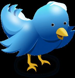 Twitter Bird Logo - Bizopia